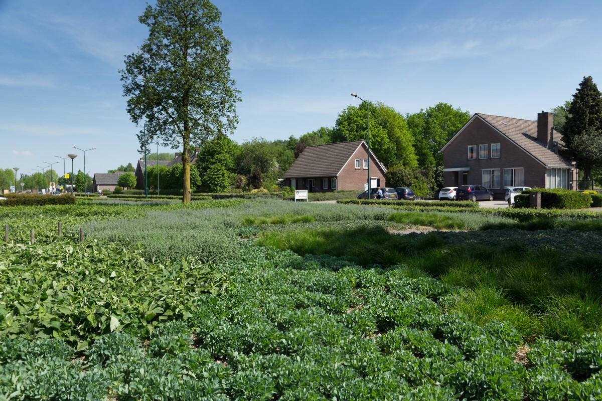 GreentoColour20160512_woonwijk (3)