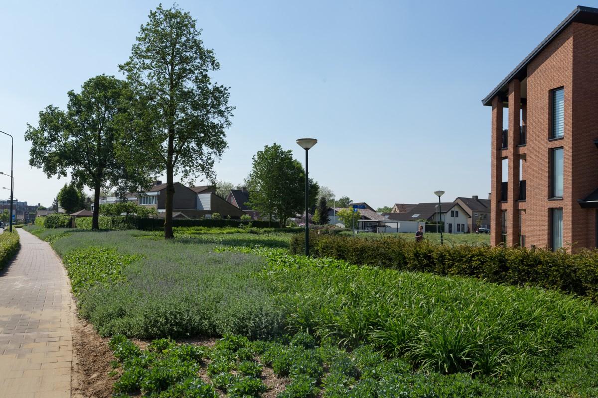 GreentoColour20160512_woonwijk (4)