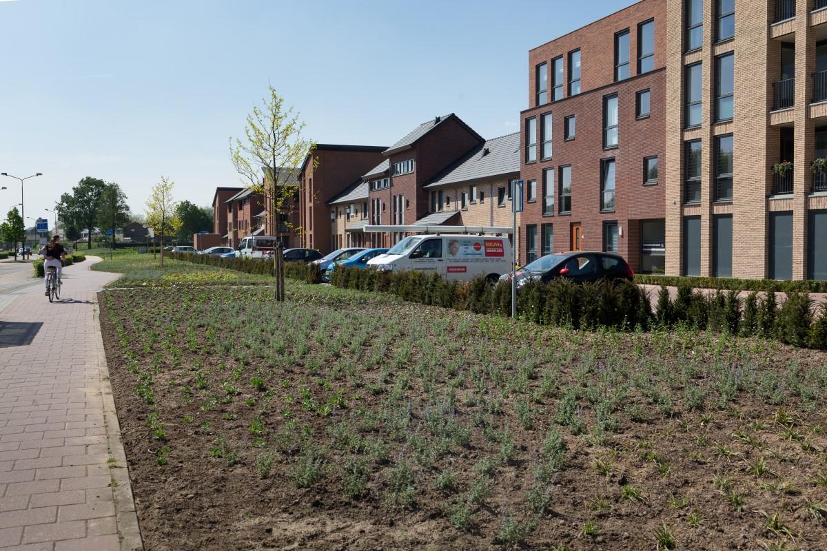 GreentoColour20160512_woonwijk_uitbreiding (1)