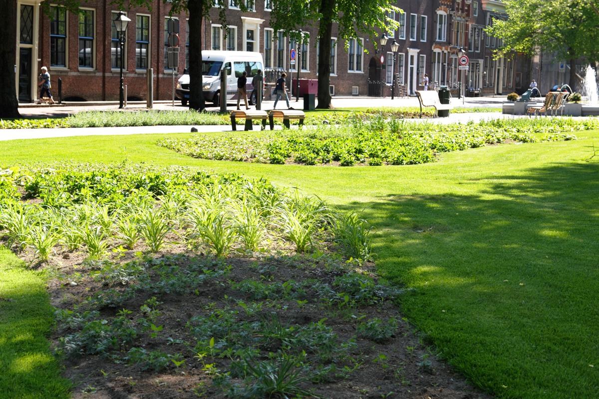 GreentoColour20160513_stadspark (4)