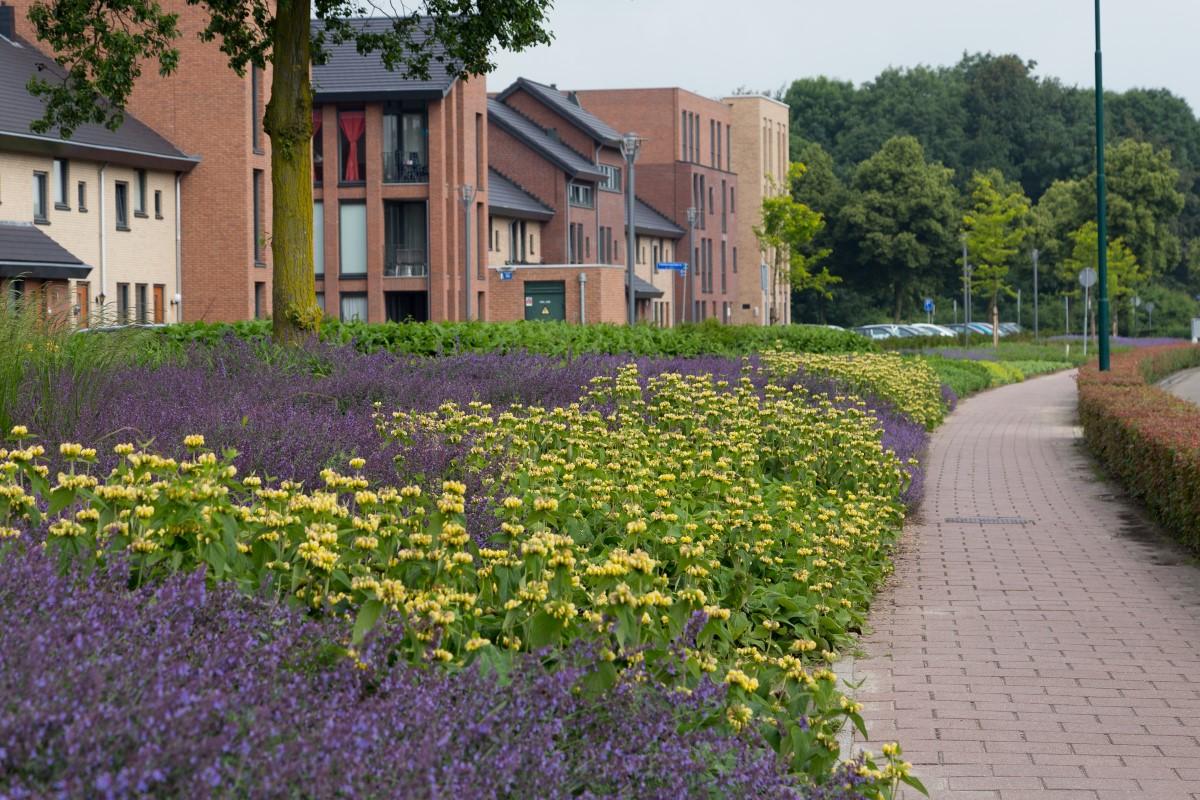 GreentoColour20160618_woonwijk (2)