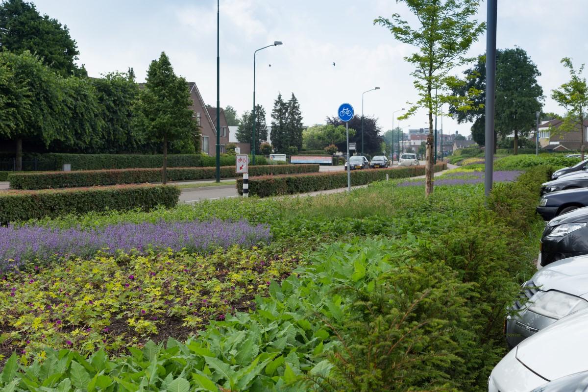 GreentoColour20160618_woonwijk_uitbreiding (4)