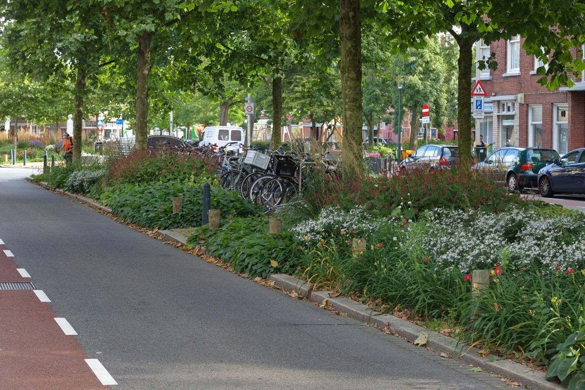 GreentoColour20160808_middenberm_winkelstraat (3)