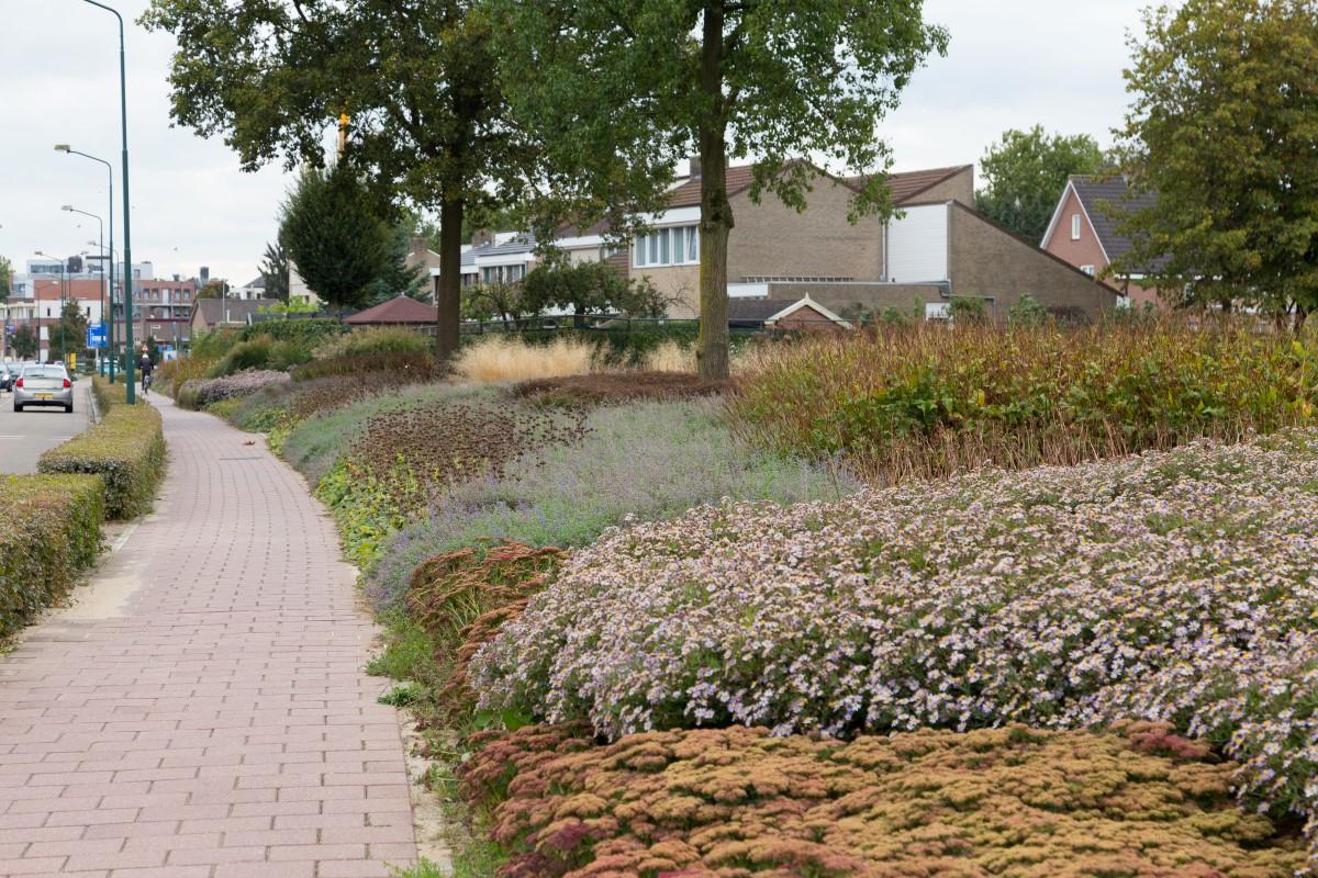 greentocolour20161013_woonwijk-1
