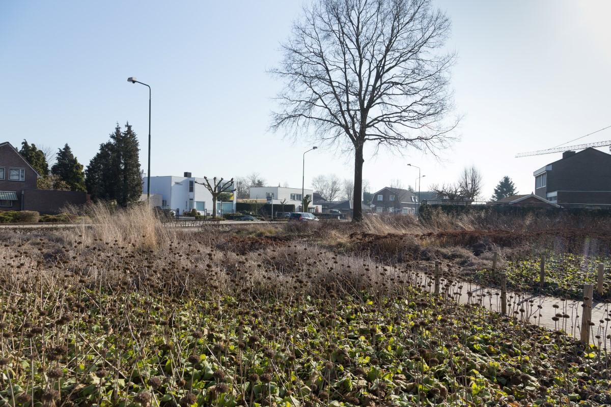 GreentoColour20170217_woonwijk (3)