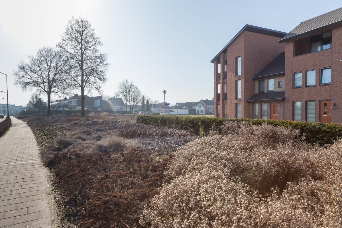 GreentoColour20170217_woonwijk (4)