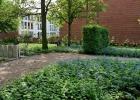 Green-to-Colour_Begraafplaatsen (11)