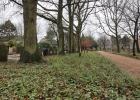 GreentoColour_20140207_begraafplaats_na_restauratie