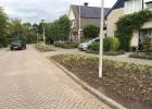 Greentocolour_Burgerparticipatie_GemZuidplas_DeLepelaar (15)