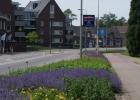08a_Green-to-Colour_Rijksweg_na