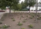 07b_GreentoColour_woonwijk_voor_201107