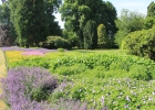 GreentoColour20160610_kloostertuin (1)