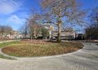 GreentoColour_20140211_Parken (1)