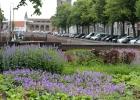 GreentoColour_20160717_stadspark (2)