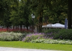 GreentoColour_20160815_stadspark (2)