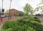Green-to-Colour_VerhoogdePlantvakken_stationsplein (01)