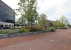 Green-to-Colour_VerhoogdePlantvakken_stationsplein (04)
