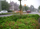 Green-to-Colour_Verkeersgeleiders (11)