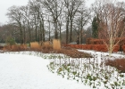 Green-to-Colour_Winterbeeld (18)
