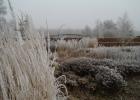 GreentoColour_winterbeeld_170118 (12)