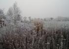 GreentoColour_winterbeeld_170118 (13)