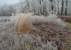 GreentoColour_winterbeeld_170118 (14)