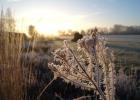 GreentoColour_winterbeeld_170118 (17)