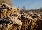 GreentoColour_winterbeeld_170118 (3)