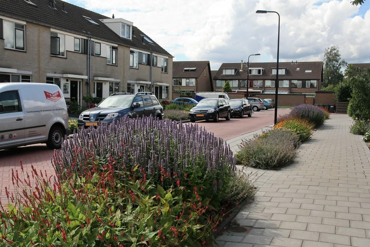 Green-to-Colour_Woonwijken (15)