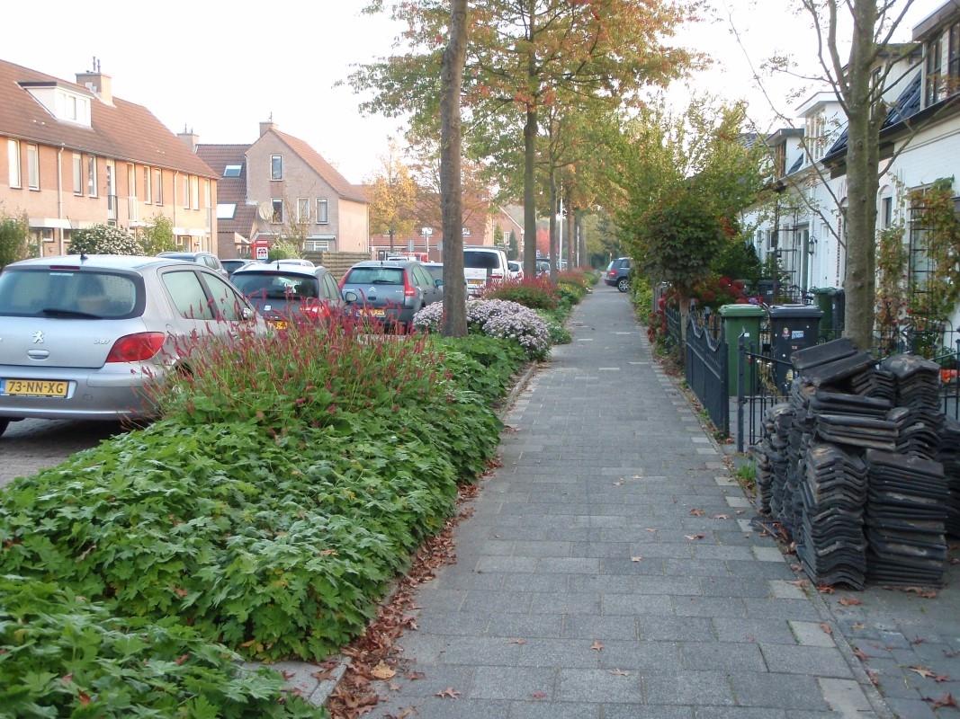 Green-to-Colour_Woonwijken (06)