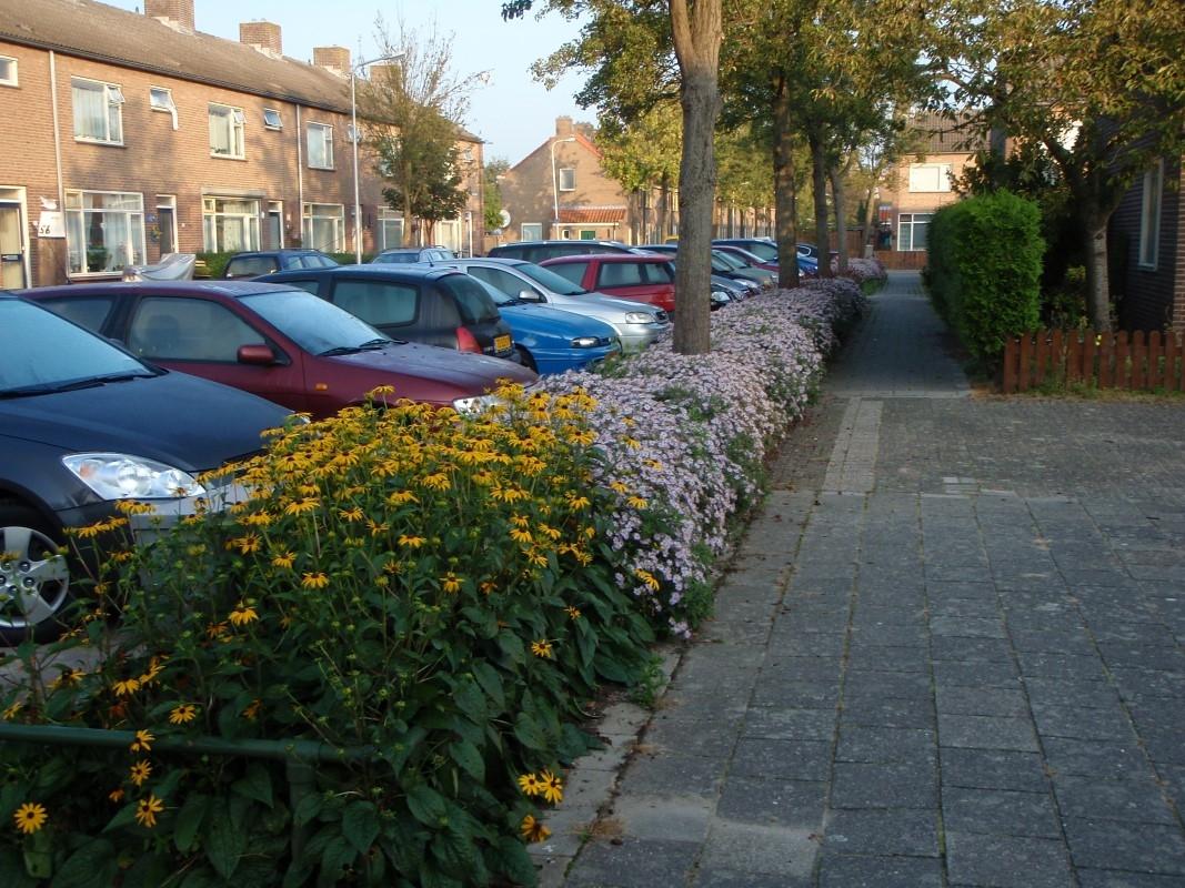 Green-to-Colour_Woonwijken (08)