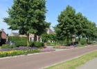 GreentoColour20160610_woonwijk (3)