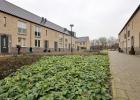 GreentoColour_20140211_woonwijk