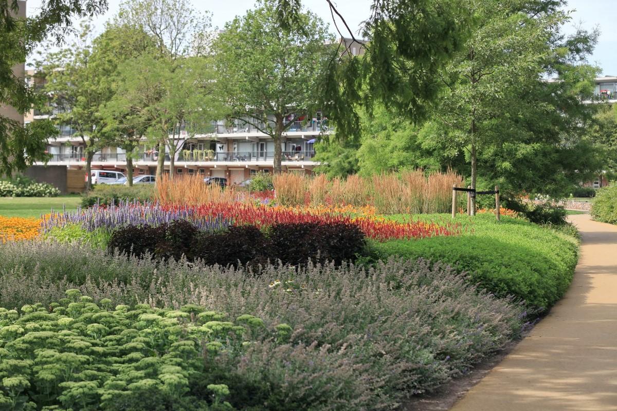 Vaste Planten Tuin : Vaste planten het fundament van uw tuin life garden