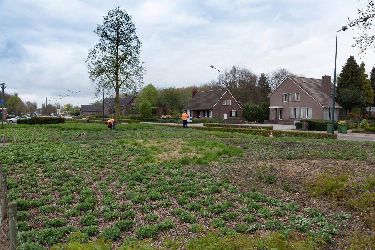 GreentoColour20170413_woonwijk (4)