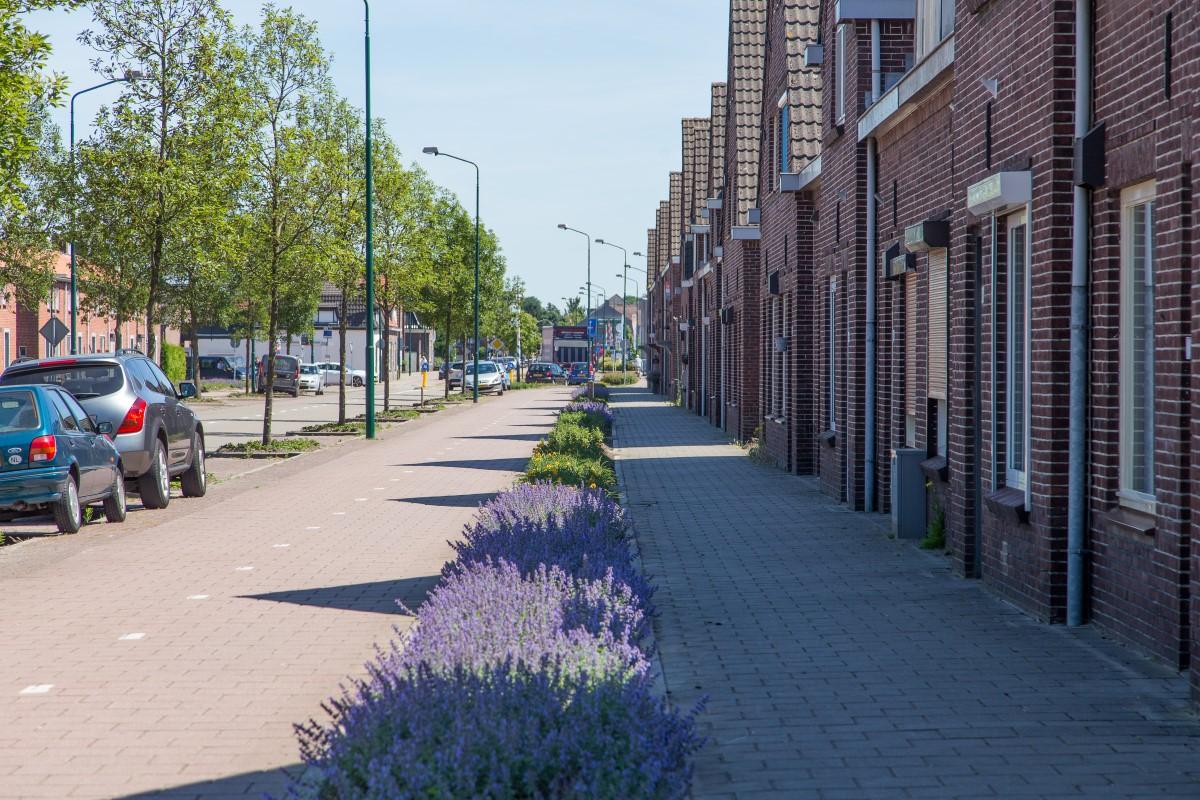 GreentoColour20170614_stedelijke_omgeving (3)